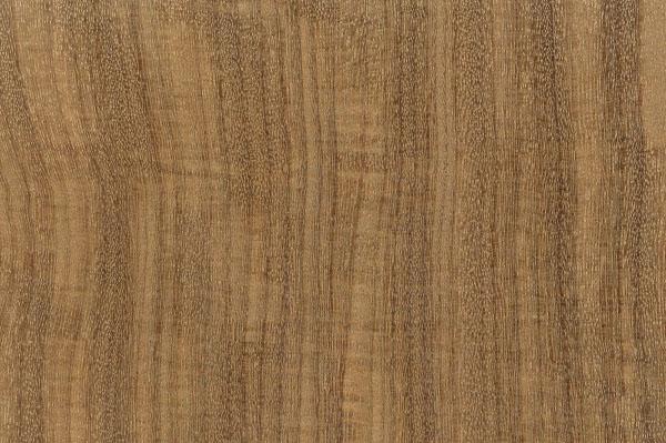 houtsoorten-afrormosia-399