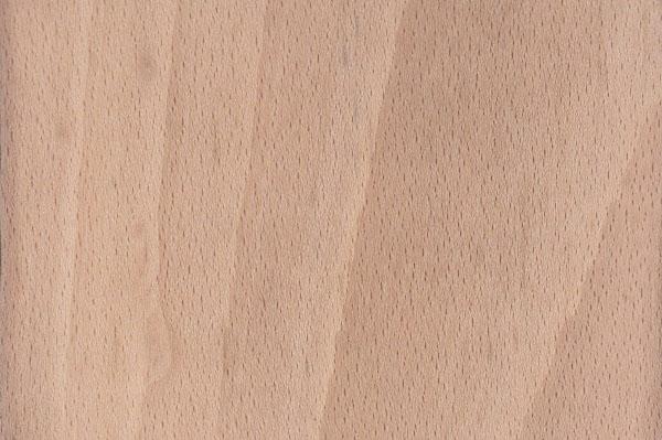 houtsoorten-beuken-399