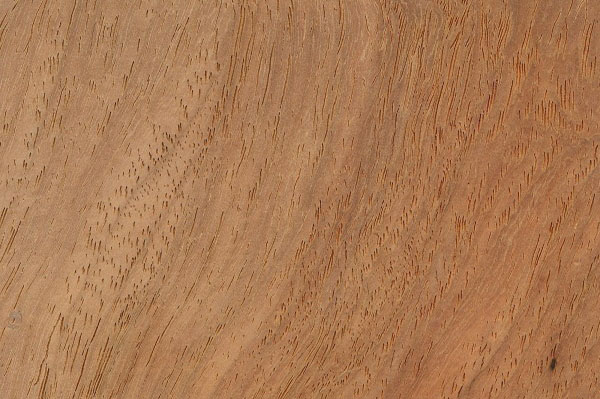 houtsoorten-kambala-399